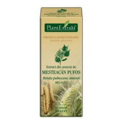 Extract din amenti de MESTEACAN PUFOS - Betula pubescens amenti 50 ml