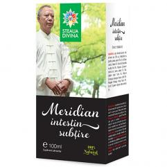 Meridian Intestin Subtire 100 ml