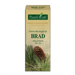 Extract din muguri de BRAD - Abies pectinata 50 ml