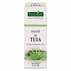 Tinctura de TUIA - Thuja occidentalis 30 ml